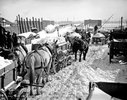 Historic 1899 photo: Horse carts carry snow to the river after a blizzard