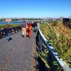 The walkways feel like pathways through the original High Line scenery